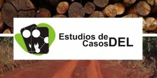 Estudio de caso: Sector Madera y Muebles, Provincia de Misiones