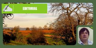 La agricultura familiar, el desarrollo territorial y las estrategias públicas para su abordaje en la Provincia de Santa Fe