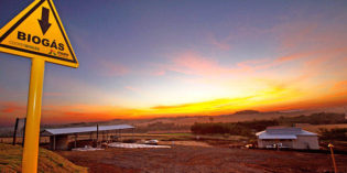 Brasil e África: parcerias para o desenvolvimento sustentável através do uso de energias renováveis
