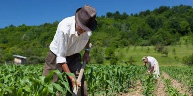 Consulta pública del contenido del Plan Nacional de Desarrollo Rural Territorial 2017-2022 en Costa Rica