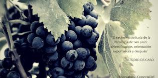 El sector vitivinícola de la Provincia de San Juan. Estudio de caso.